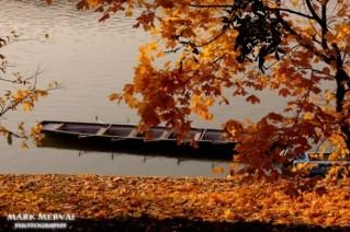 fall-on-margitsziget05_574_383