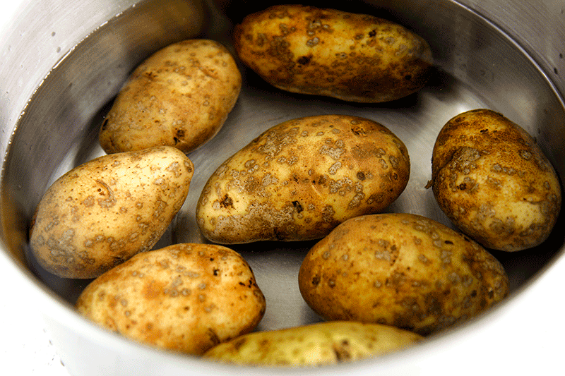Russet potatoes recipe