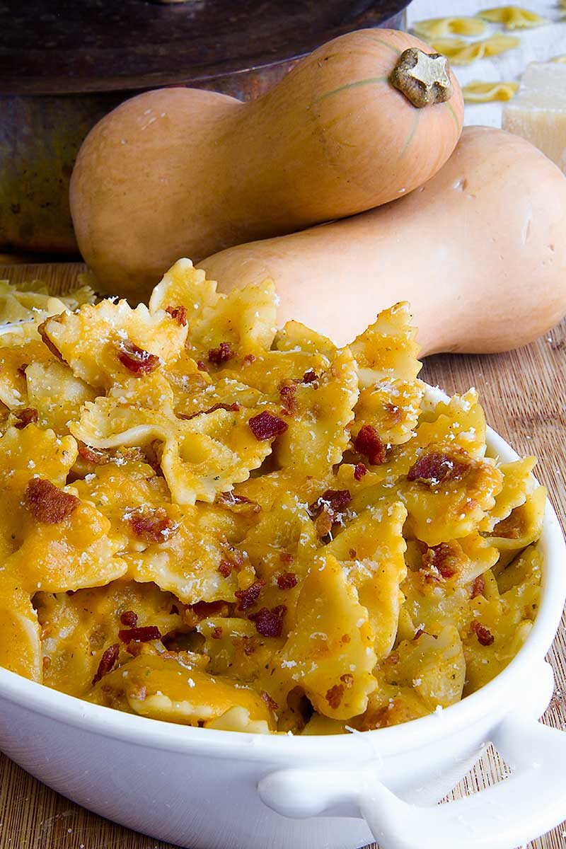 FARFALLE PASTA with butternut squash sauce and bacon flakes