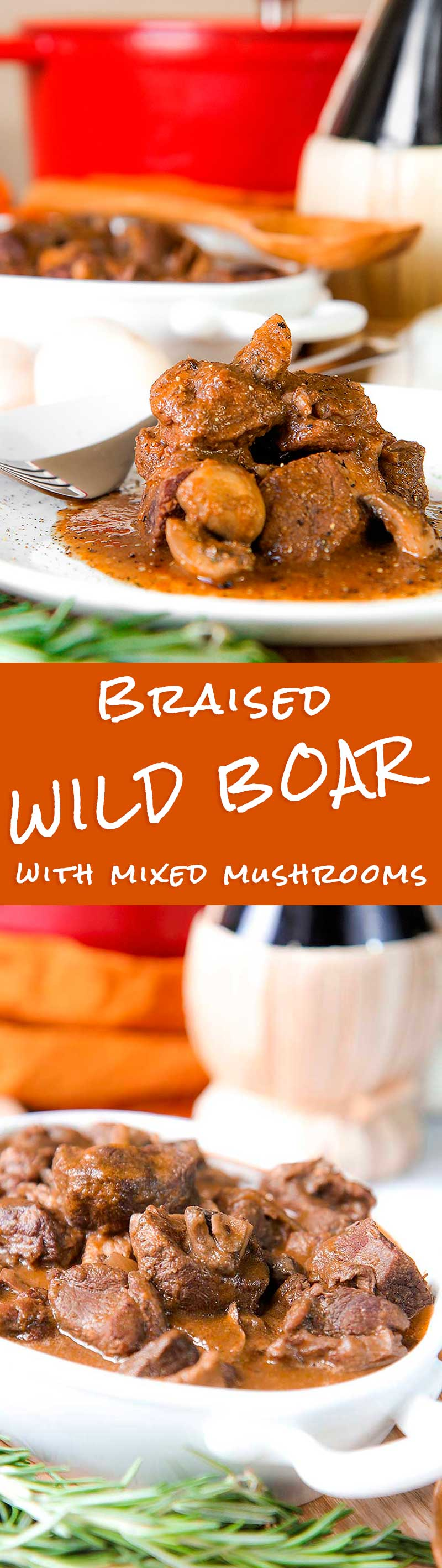 WILD BOAR STEW with mushroom and red wine