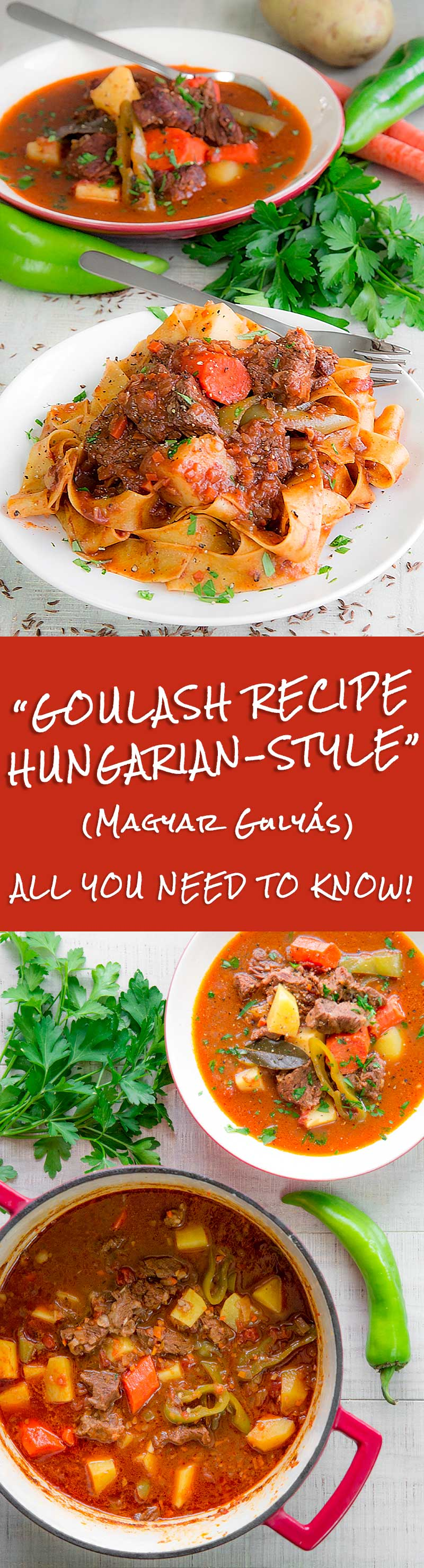 The Hungarian goulash recipe is one of the most typical dishes of East Europe. A country recipe become a masterpiece of the comfort food culture!