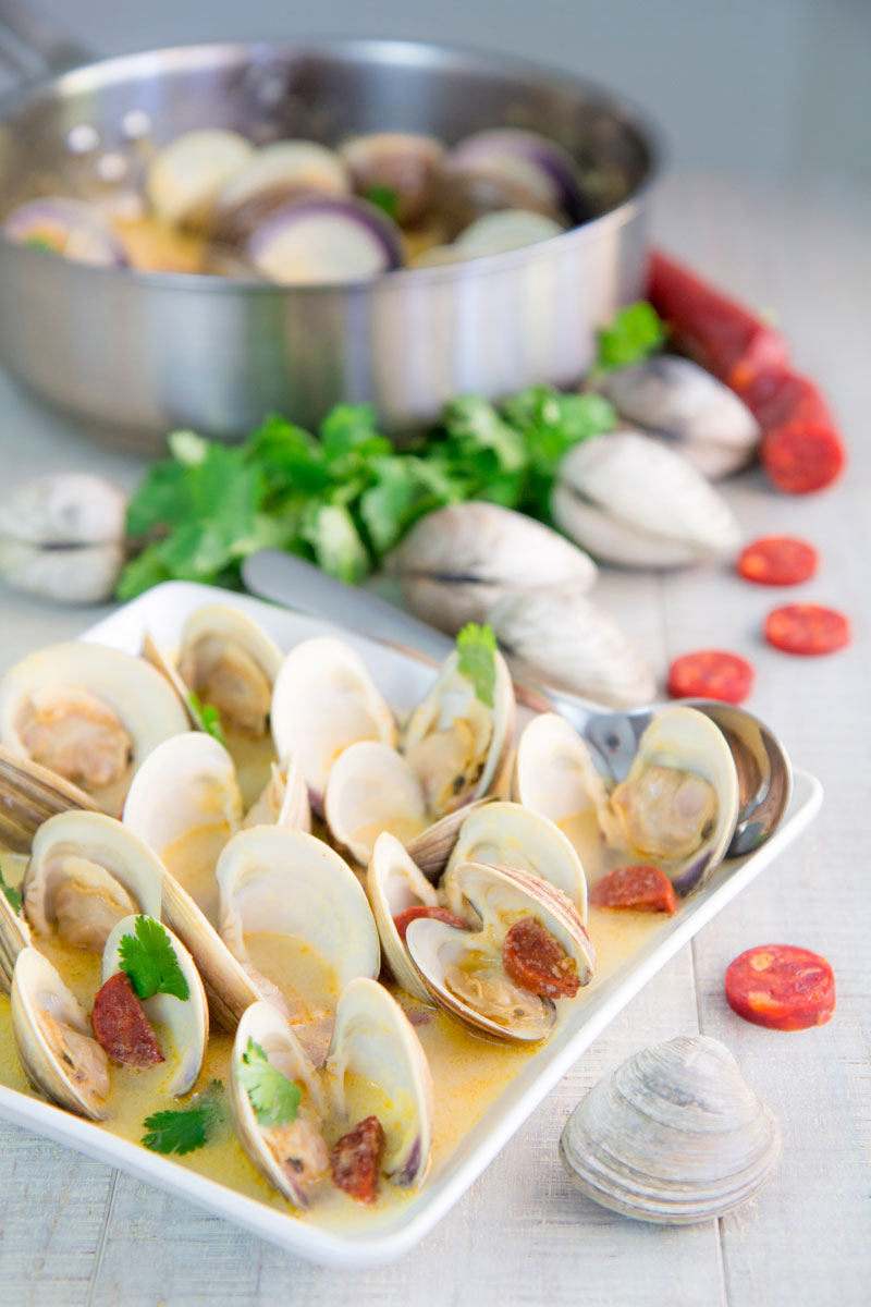 PORTUGUESE CLAMS STEW with Chorizo and white wine sauce