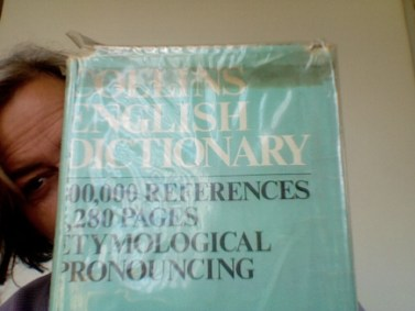 collins dictionary1