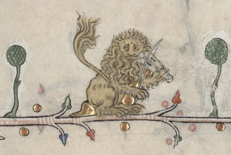 fiddling lion litterascriptaFB