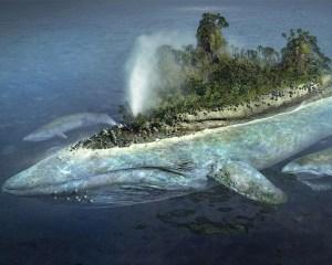 %name Godlike Monster Art Whale Island
