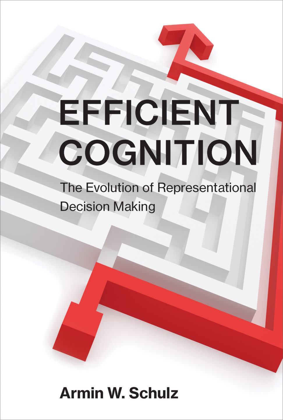 Efficient Cognition—The Evolution of Representational Decision Making