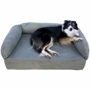 The Best Memory Foam Dog Bed