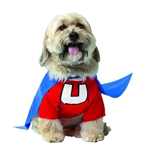 Big Dog Underdog Halloween Costume