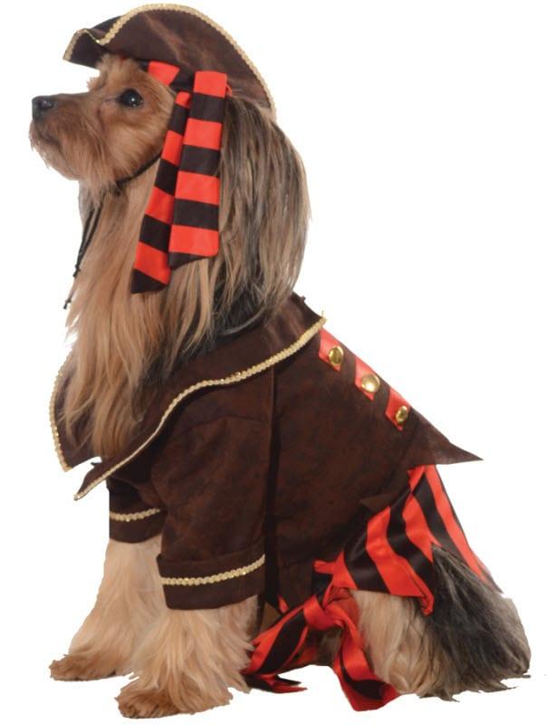 Big Dog Pirate Costume