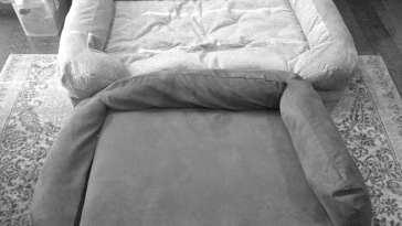 Snoozer Forgiveness Bed