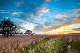 Spiritual Path through Wild Countryside