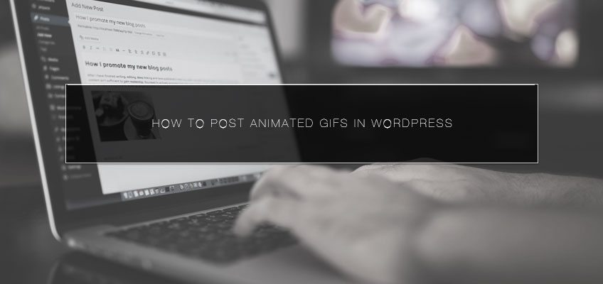 How to Post Animated GIFs in WordPress