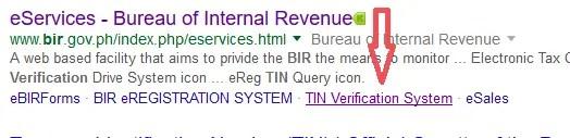verify tin online bir