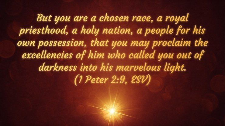 But you are a chosen race, a royal priesthood, a holy nation, a people for his own possession, that you may proclaim the excellencies of him who called you out of darkness into his marvelous light. (1 Peter 2:9, ESV)But you are a chosen race, a royal priesthood, a holy nation, a people for his own possession, that you may proclaim the excellencies of him who called you out of darkness into his marvelous light. (1 Peter 2:9, ESV)