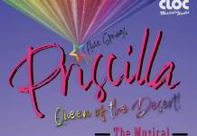 Cloc Audition - Priscilla Queen of the Desert