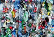 recyclable plastic bottles | Photo by PxHere