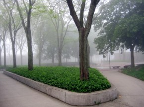 Schrock Plaza