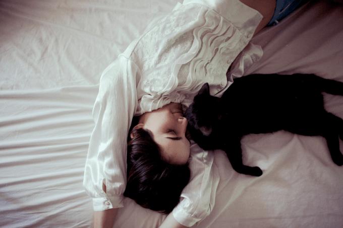 Alexis Mire cat