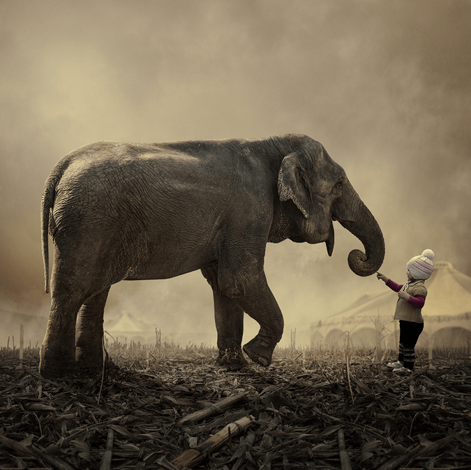 Stop it, you tickled me by Caras Ionut