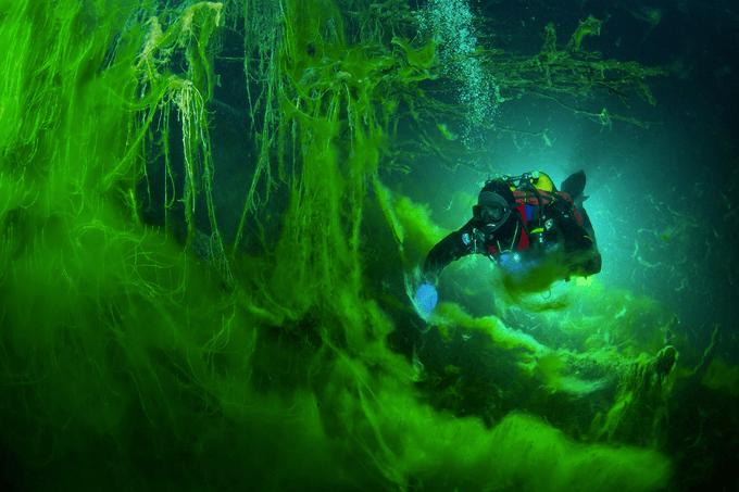 The Magical World of Blue Lake by Viktor Lyagushkin