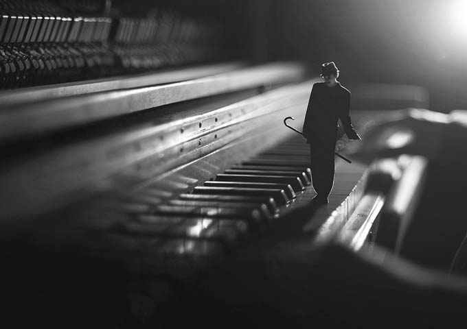 jazzcat by jev