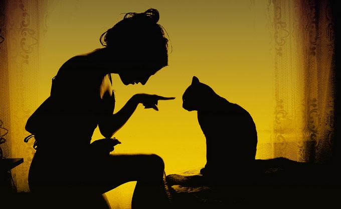 Bad Kitty by Sandy Manase