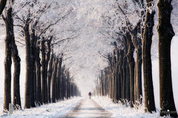 Endless Winter by Lars van de Goor