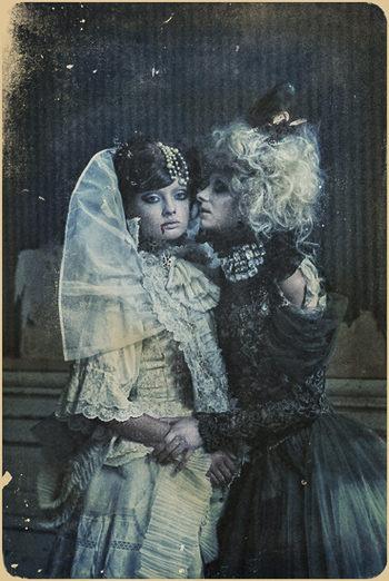 Vampire Chronicles by Katarzyna Widmanska