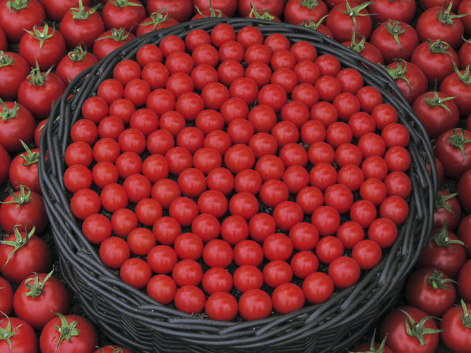 Circle of Tomatoes by Simon Webster
