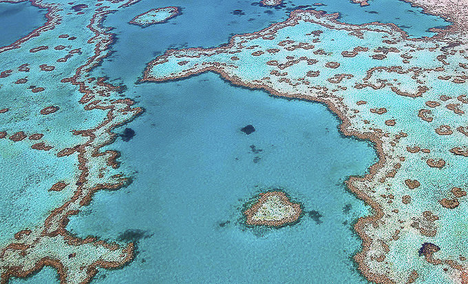 Heart-Reef-aerial-by-Tanya-Puntti