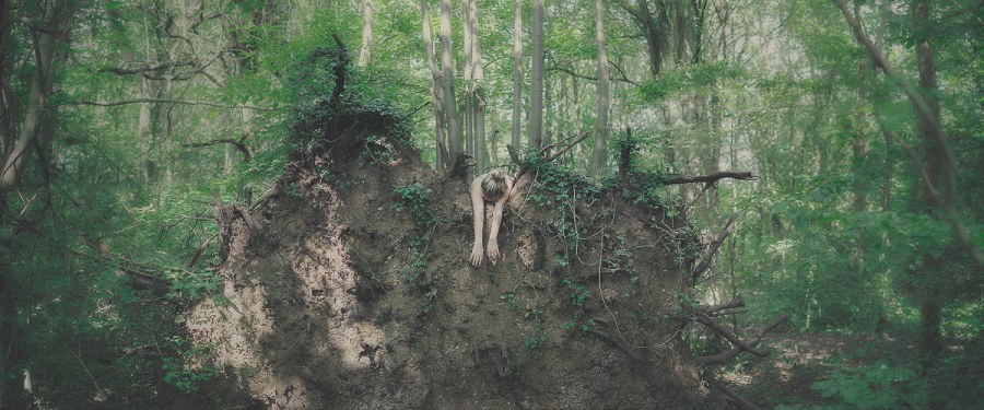 Uprooted by Sam Goodridge