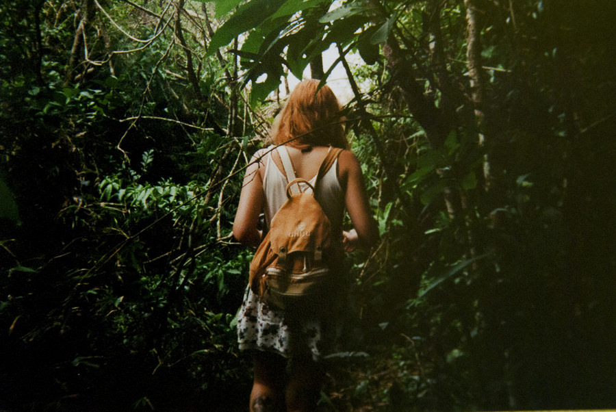 into the wild by t. albuquerque