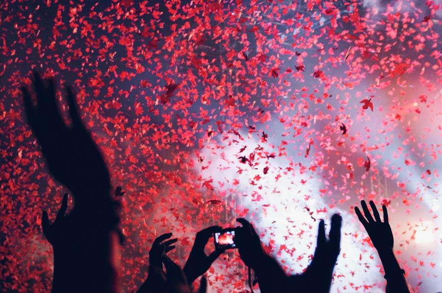 red bird confetti by Elina Nilsson