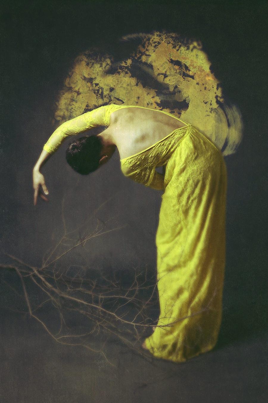 Of Desolate Amber by Josephine Cardin