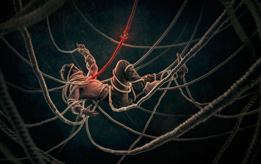 The-thread-of-life-by-Robert-Cornelius
