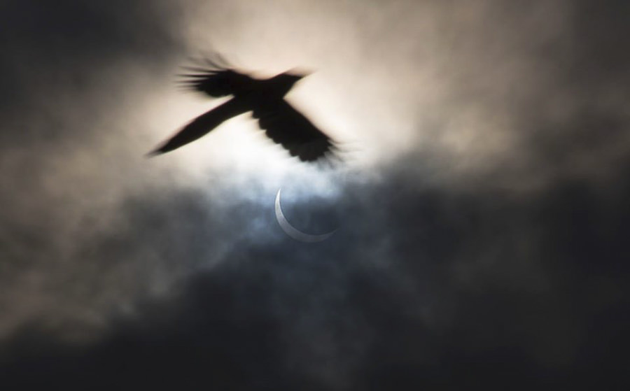 Solar Eclipse, Manchester by Andrew Brooks Photography