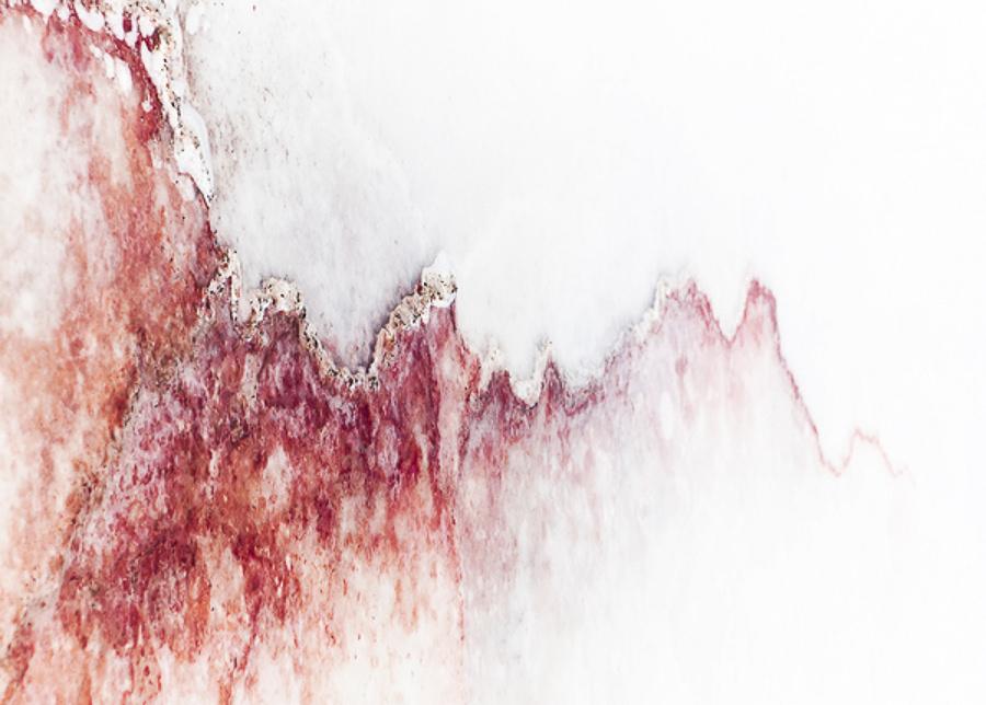 Salt Art by Shawn van Eeden