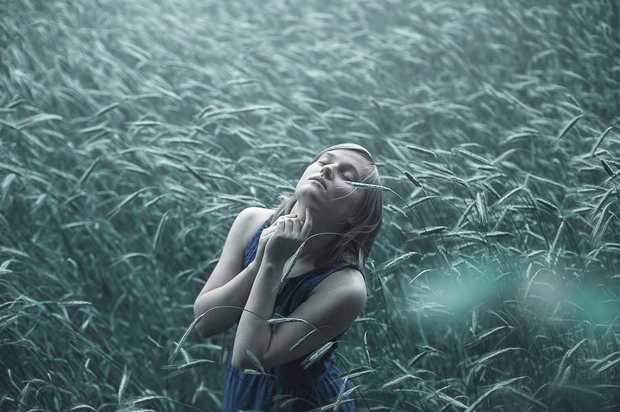 My Inner Harmony by Sasha O