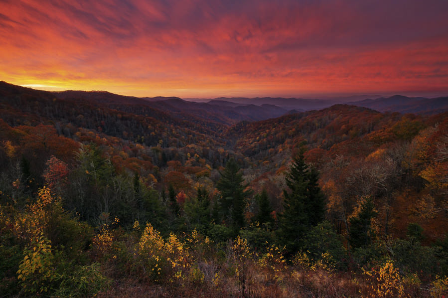 Deep Creek Overlook, Great Smoky Mountains National Park by Phil Varney