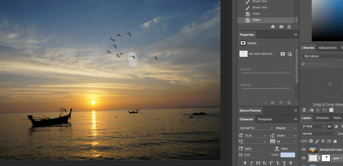 Photoshop Tutorials: How to Add Birds to Photos in Photoshop