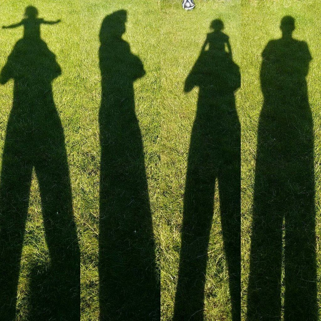 image of 4 different self shadows