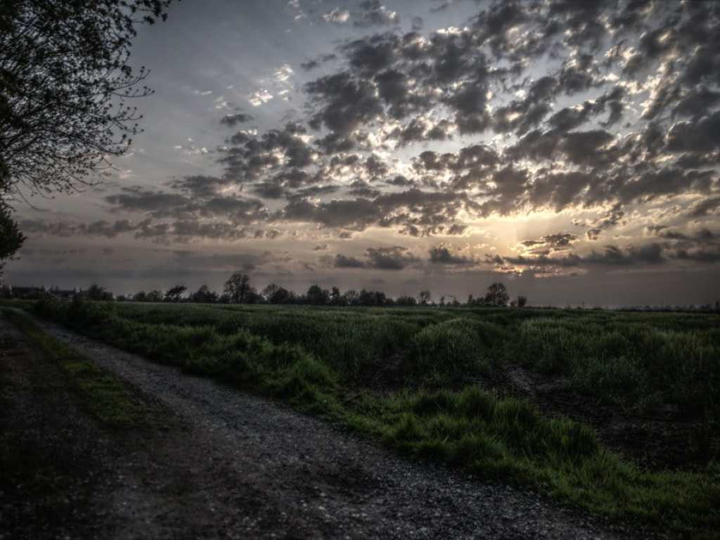 Image of farmer field in Saxilby, Lincolnshire