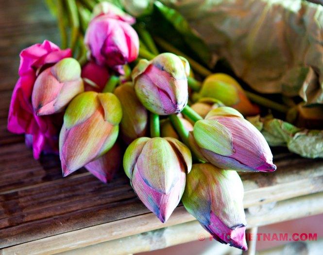 Lotusbloemen (foto: Pho Vietnam © Kim Le Cao)