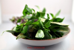 Thai basil (photo: Kim Le Cao © Pho Vietnam)
