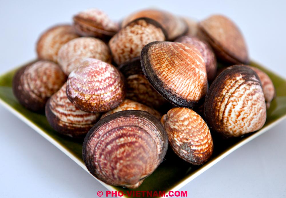 So huyet rang me | Shellfish in tamarind sauce – Pho Vietnam