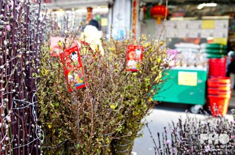 Vietnamese nieuwjaarstakken in Parijs (foto: Kim Le Cao © Pho Vietnam)