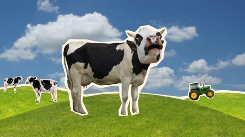 cowcutoutmu
