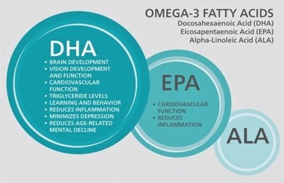 Omega-3 Fatty Acids  Essential Food Guide
