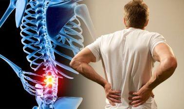 exercises for lower back pain strain