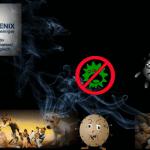 Werbebild zum Phoenix für Geruchsbeseitigung